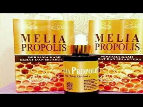 Efecte terapeutice ale propolisului