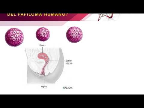 human papillomavirus incubation fie cauterizarea papiloamelor