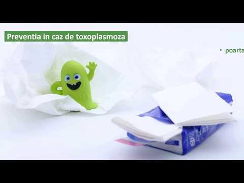 terapia cu infecții giardia)