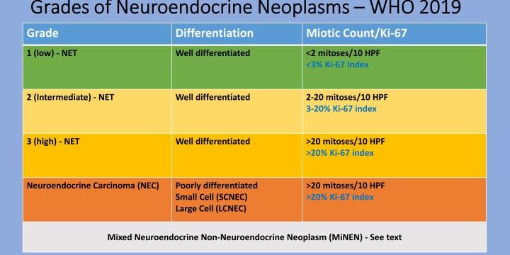 Urină sediment - Synevo Medicamente pentru tratamentul HPF