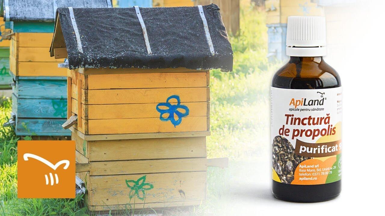 Tinctura de propolis oxiuri. Giardinophyt, 30 ml, Plant Extrakt : Farmacia Tei
