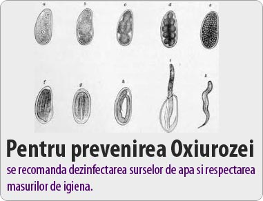 helminti în anus