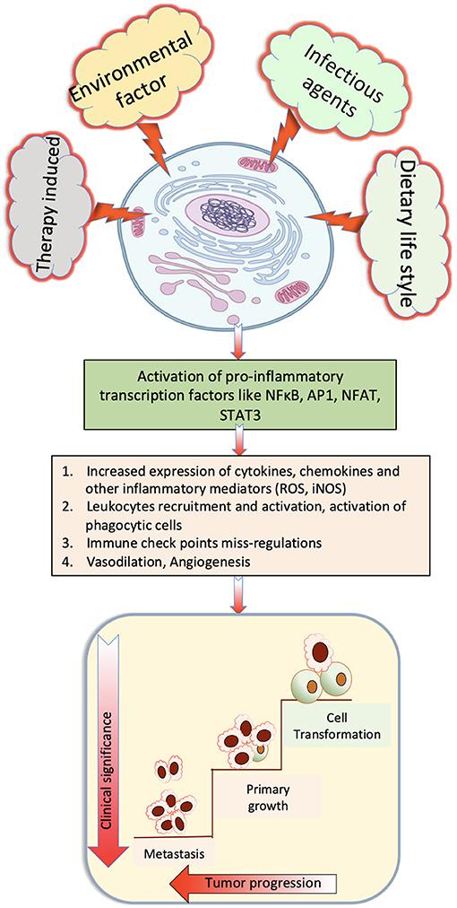 helminth disease burden