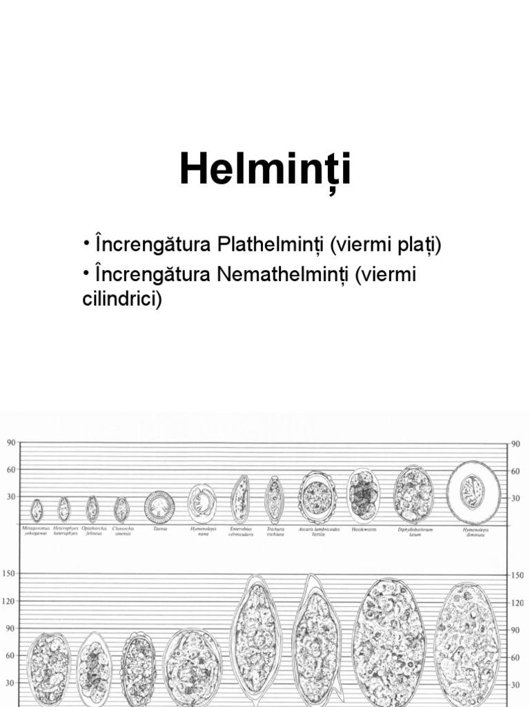 fascioliasis și opistorhiasis conjunctival papilloma interferon