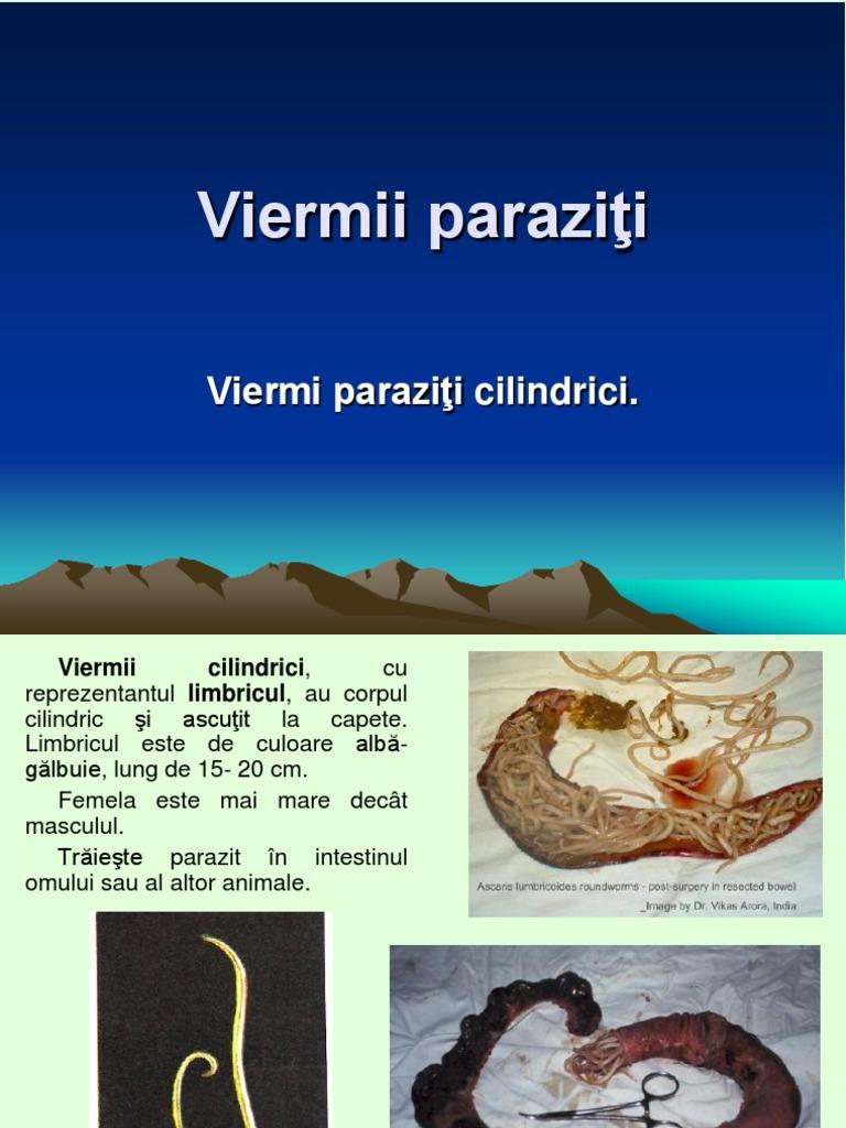 paraziți și viermi hpv hr negatif