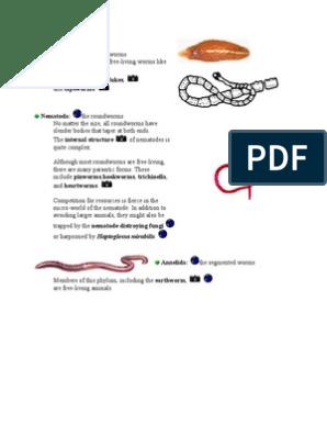 preparate de fier pentru prevenirea enterobiozei