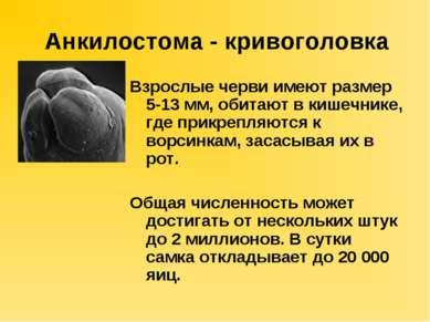Parazitozele intestinale: giardioza si ascaridioza | primariacetateni.ro