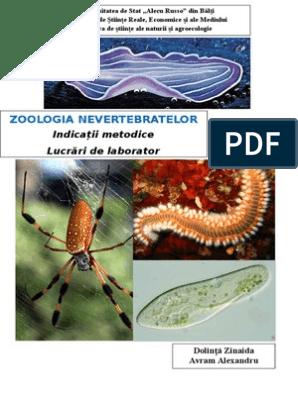 adaptări ale parazitismului cu vierme rotunde
