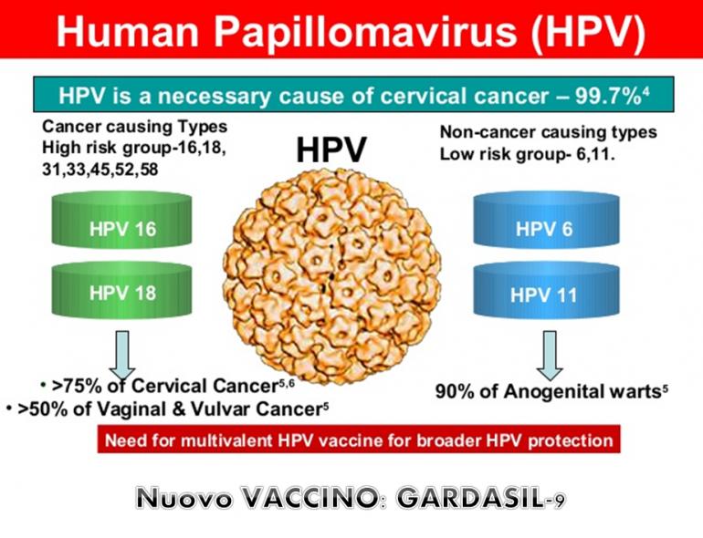 papilloma virus italia îndepărtați papiloma în vladimir