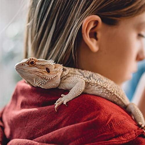 Reptile antiseptice