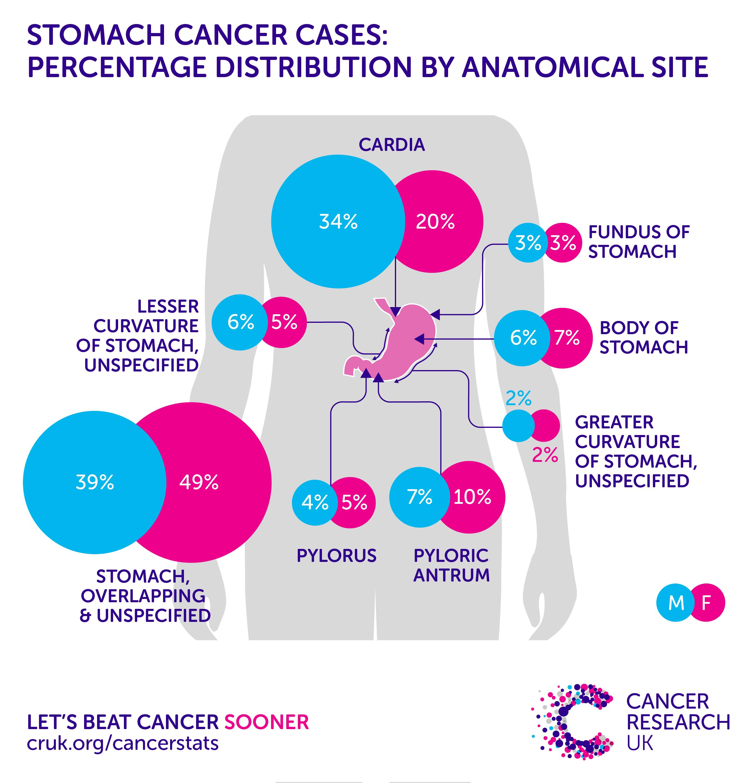 cancer gastric epidemiology tratamentul viermilor pe piele