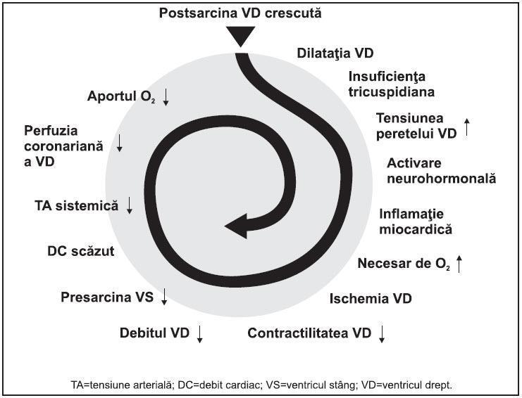 coagularea papilomavirusului cel mai recent helmint de droguri