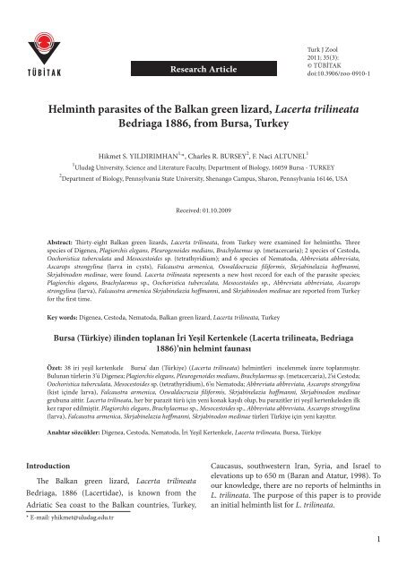 Din helmint, helmint - definiție și paradigmă | dexonline