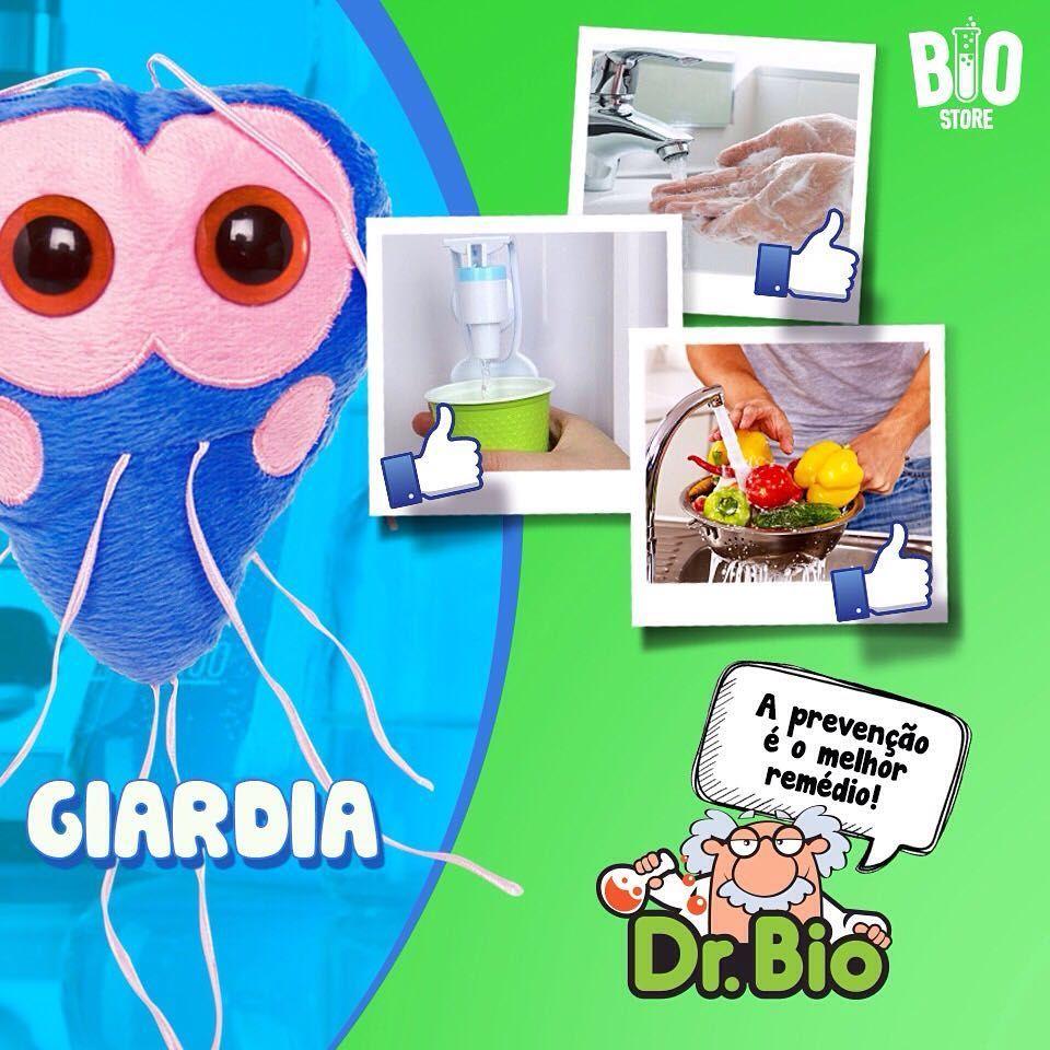 Giardia sintomas transmissao e prévencao Szoptatás idején alkalmazott enterobiasis gyógyszere
