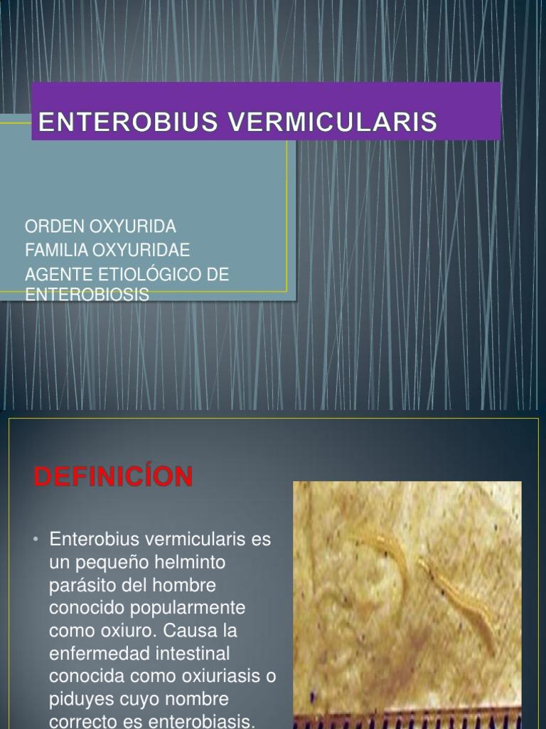 enterobiasis otro nombre dezvoltarea viermilor