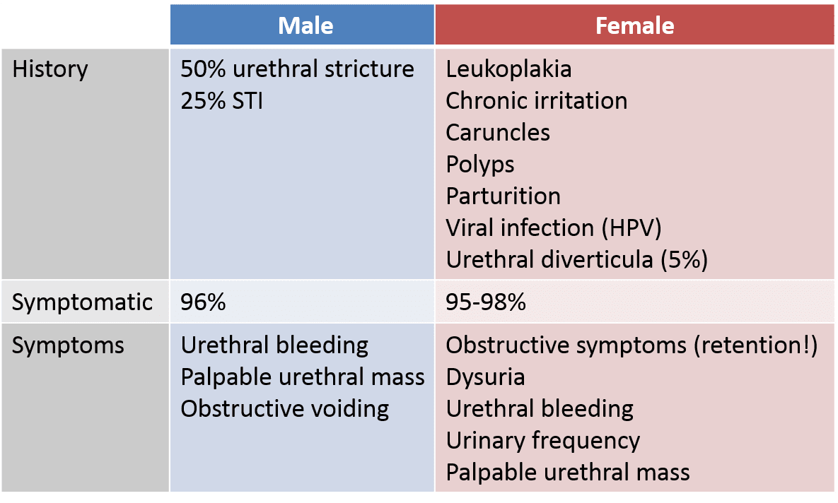 hpv and urethral cancer hidroterapie colonică hidro detoxică