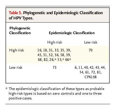 hpv high risk other