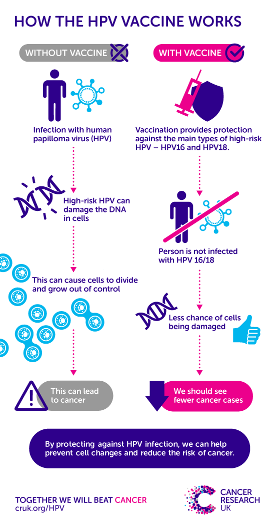 High risk hpv leads to cancer