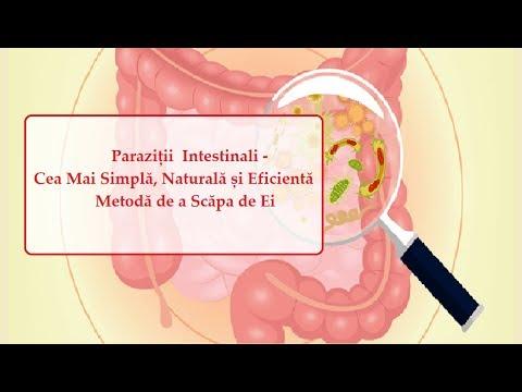 Mijloace pentru îndepărtarea paraziților din corpul uman - Viermii si parazitii intestinali