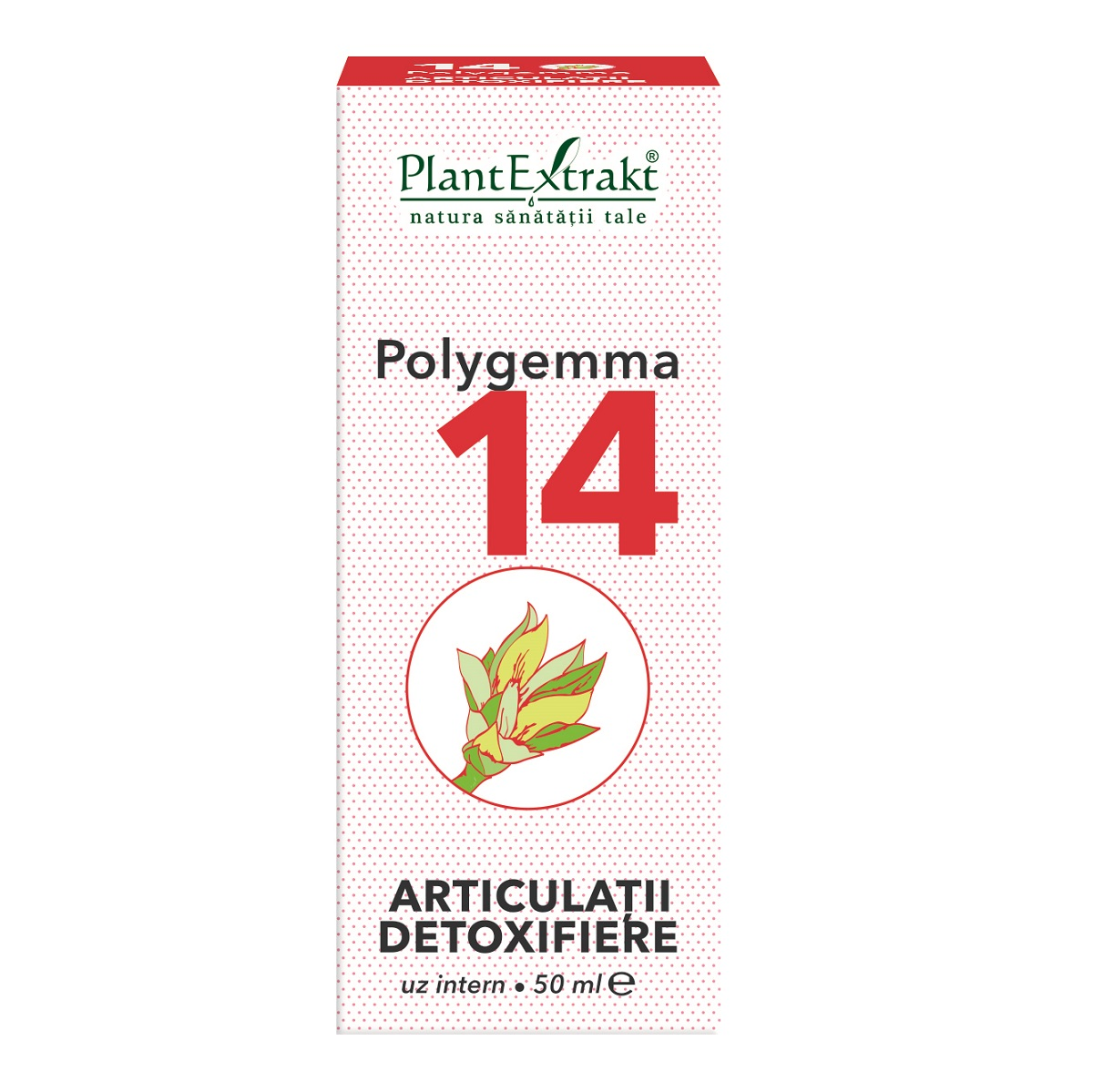 Polygemma Nr.14 pentru articulatii si detoxifiere 50 ml - PlantExtrakt