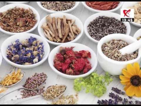 Cele mai bune medicamente naturiste pt. tratamentul paraziților intestinali | primariacetateni.ro
