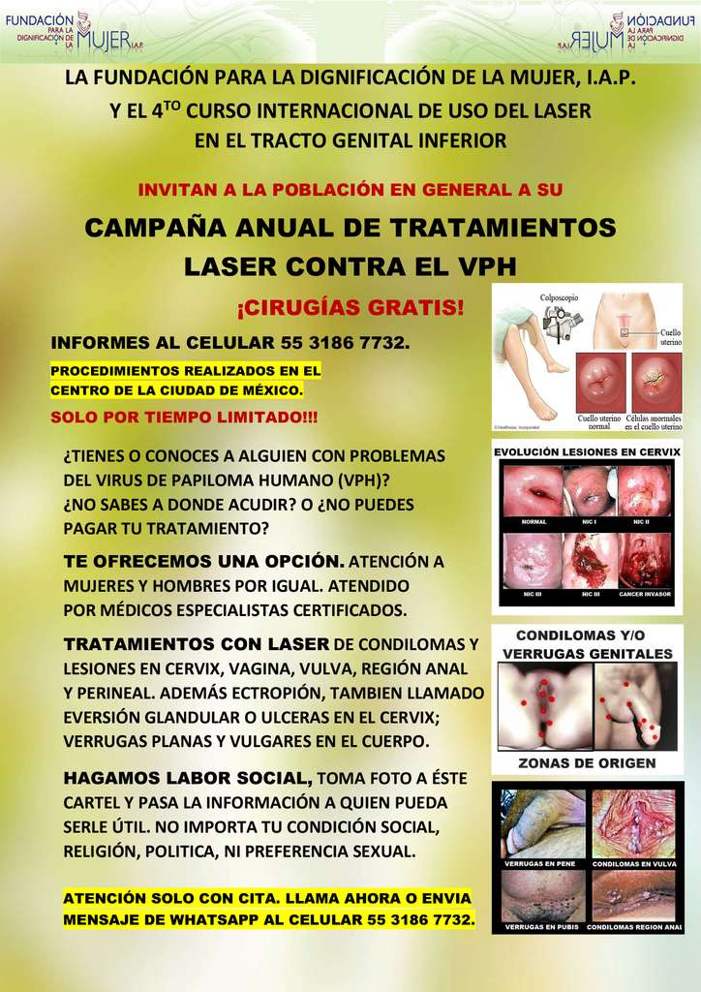 Virus papiloma para hombres, Hpv en hombres deteccion - p5net.ro