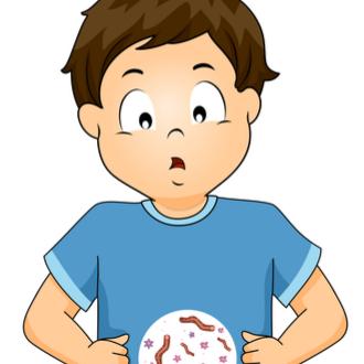 Parazitozele intestinale: giardioza si ascaridioza   anaairporthotel.ro