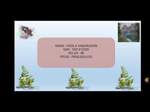 kelas nemathelminthes cacing papillary lesions of urinary bladder