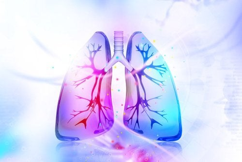 detoxifiere de nicotina