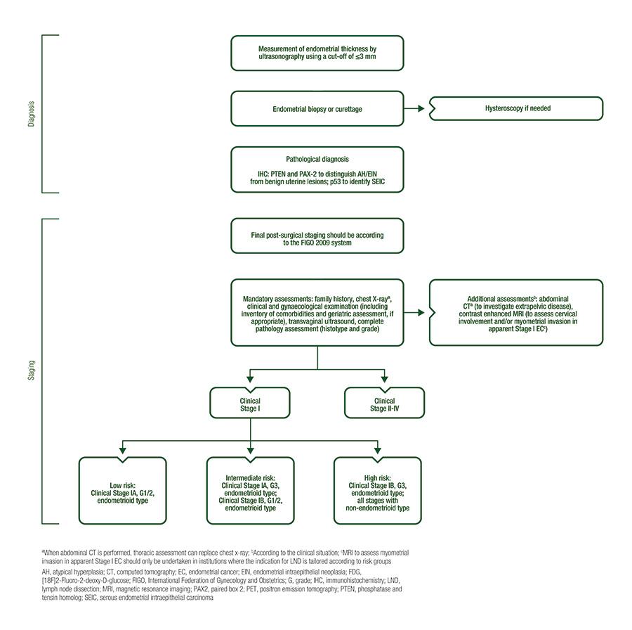 endometrial cancer diagnosis guidelines tipuri de viermi taur