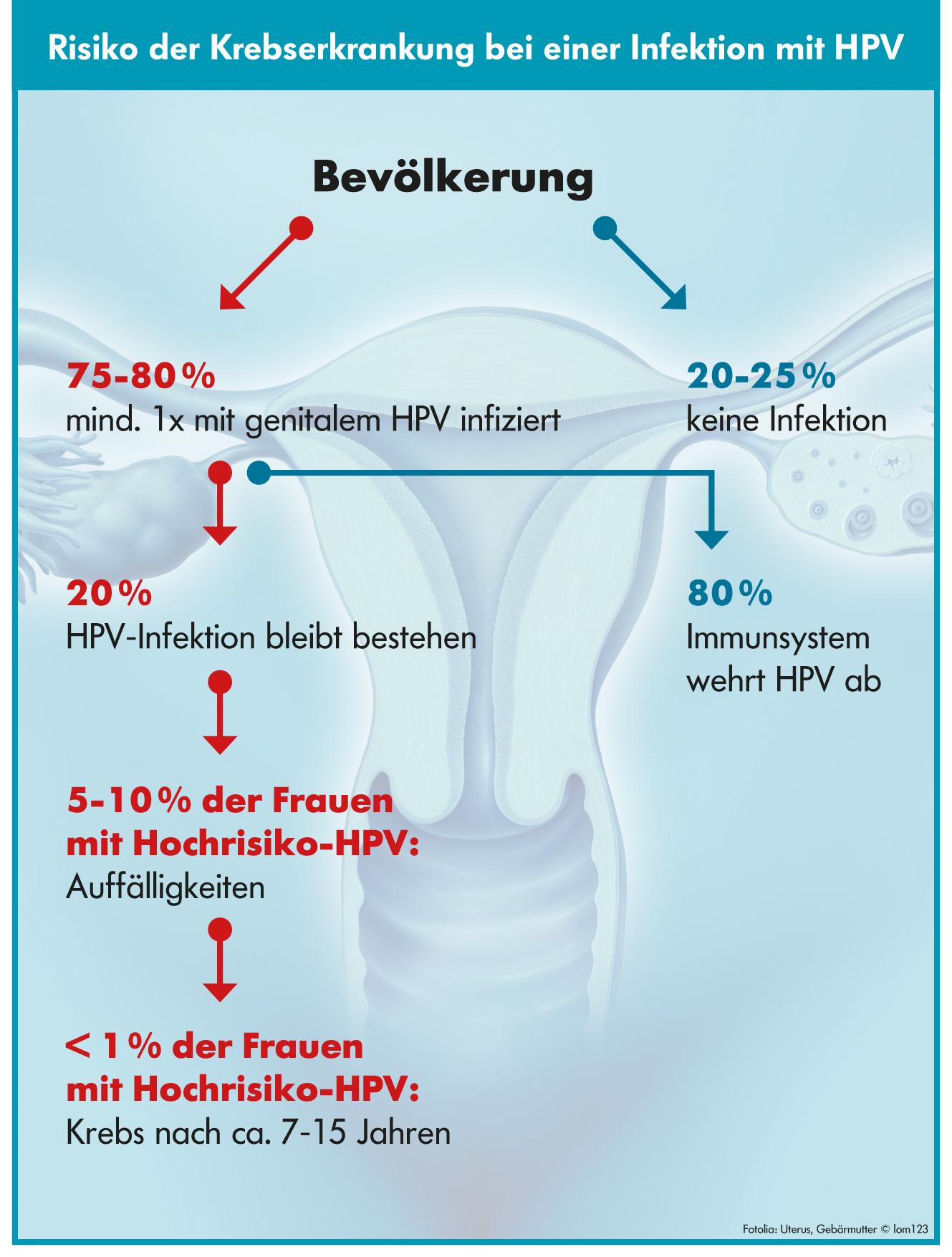 hpv krebs definition