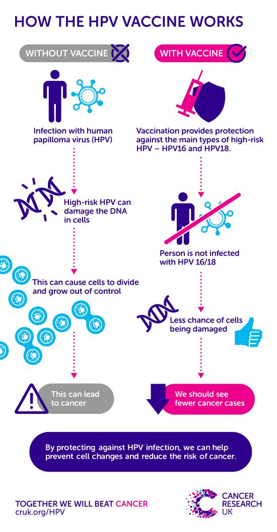 hpv cause cancer papilloma po polsku