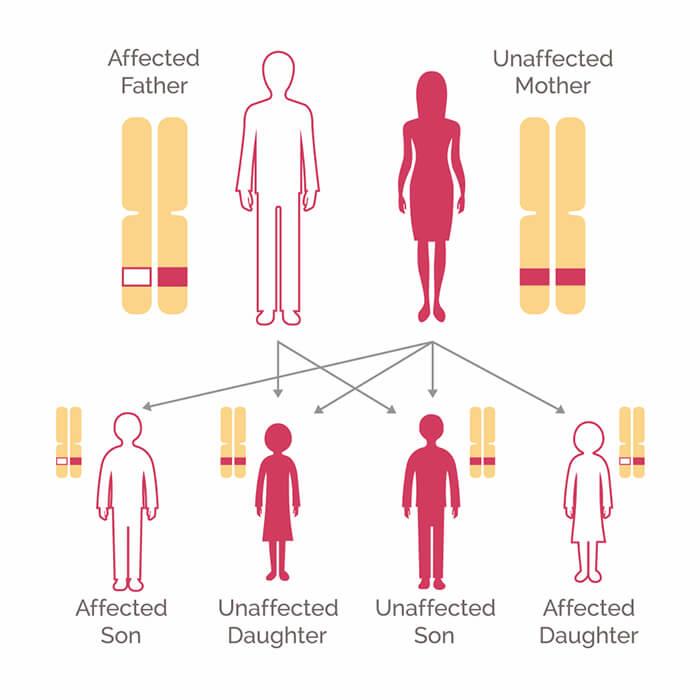 Cancer san protocolo - Familial cancer linkage analysis