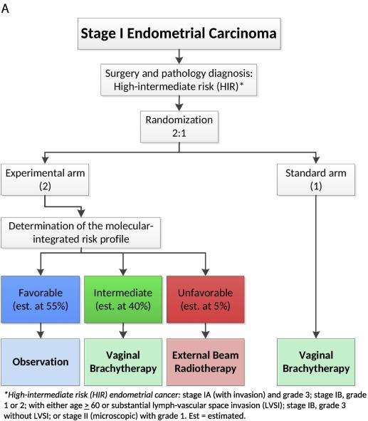 endometrial cancer diagnosis guidelines papilomavirus la simptomele bărbaților