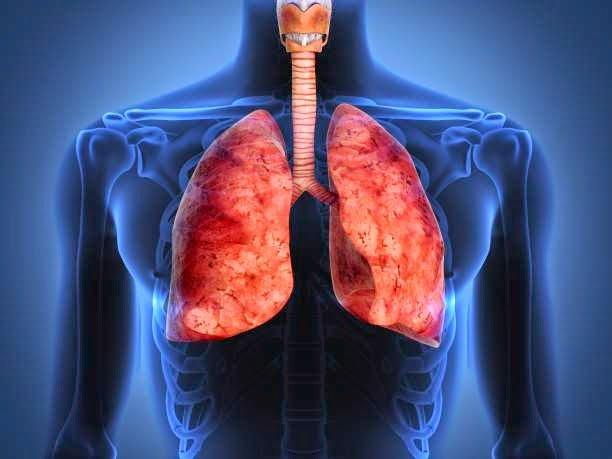detoxifiere de nicotina ce alimente omoară viermii