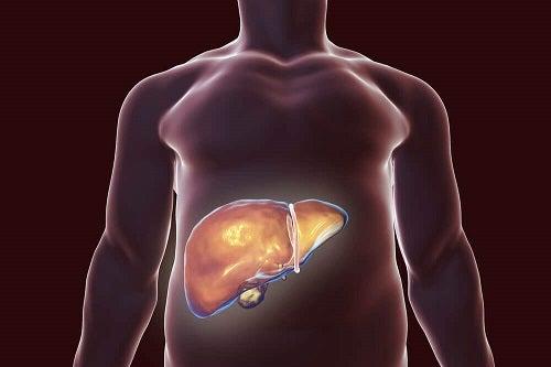 detoxifierea ficatului in 3 zile