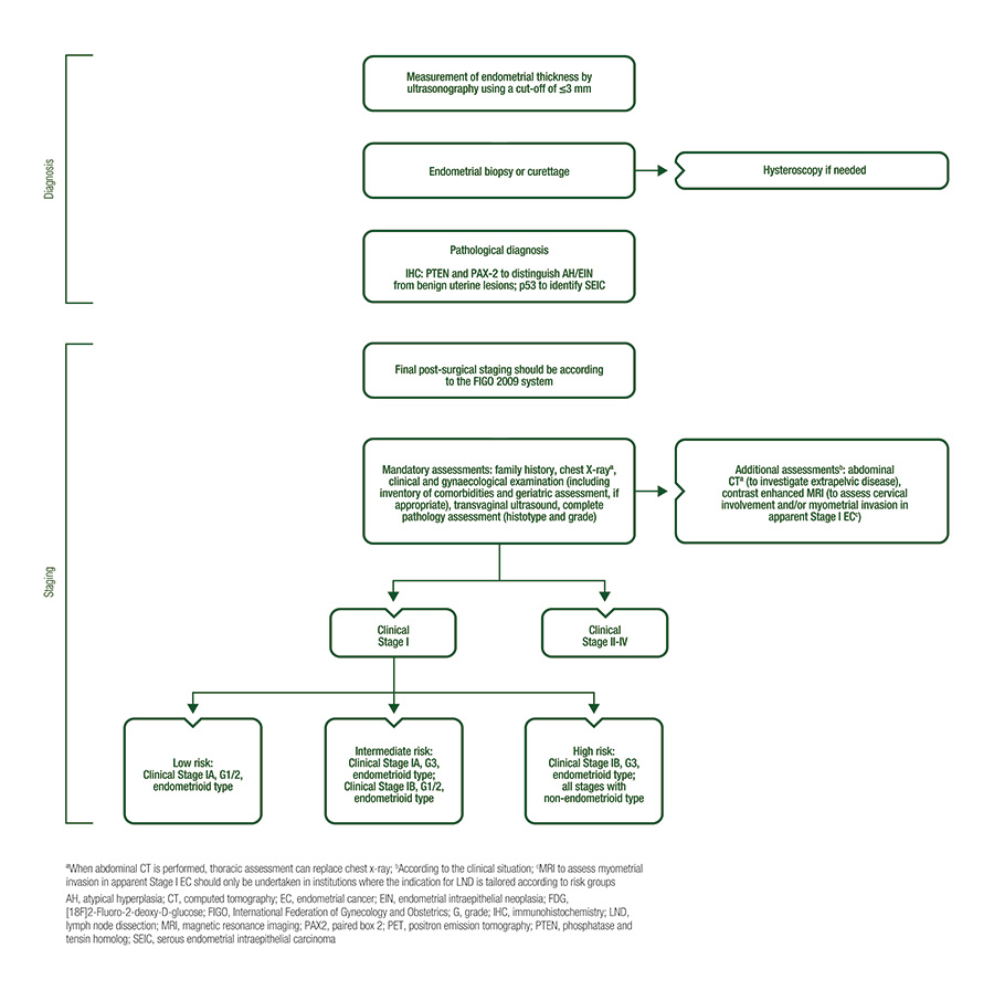 endometrial cancer guidelines