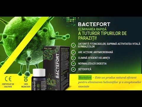 forum bactefort