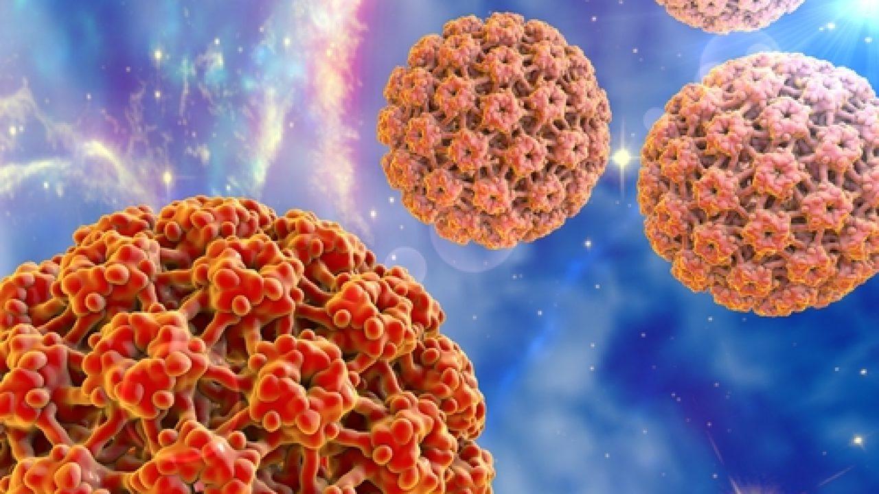 il papilloma virus e trasmissibile antihelmintic lichid pentru copii
