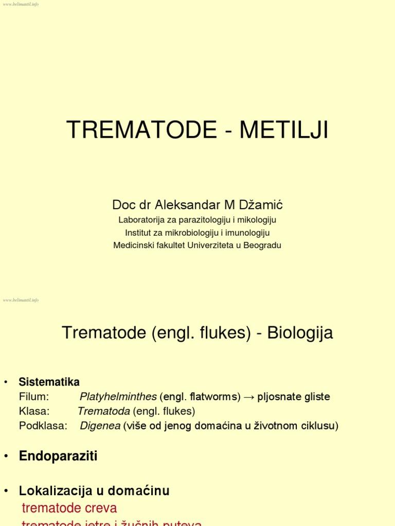 reguli pentru tratarea viermilor