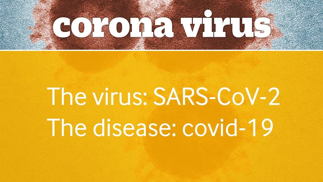 viruți sau virusuri veruci genitale criofarm
